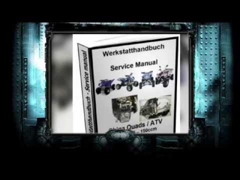 Werkstatthandbuch, Reparaturanleitung, Motor China Quad, ATV, 125 ...