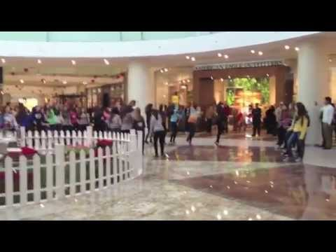 flashmob - Taj Mall Amman/Jordan - YouTube