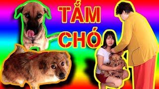 BUI VLOGS | Tắm cho 2 em chó Lucky và Bin Bin - Cái kết lăn tròn không mệt mỏi (bathing my dog)
