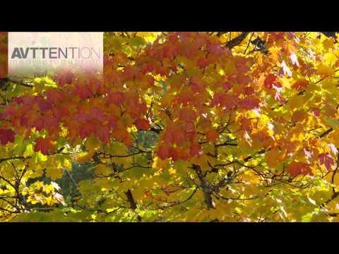 Das Bergische Land im Herbst 4K Ultra HD