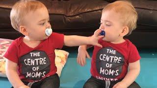 Pacifier war - identical twins