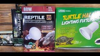 파충류 거북이 램프 선택 방법 사용방법 UVB 스팟 램…