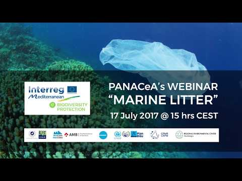 Webinar on Marine Litter
