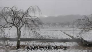 【ゆっくりとうp主が行く】E531K市民の鉄道旅 第一弾 「北海道&東日本パスの旅~仙台編~」