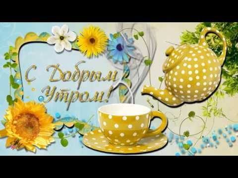 Доброе утро, солнышко! Смешная видео открытка с пожеланием доброго утра.