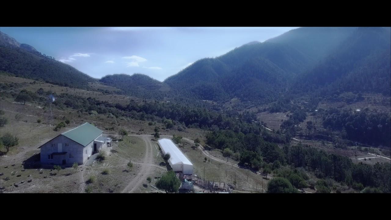 Arteaga Coahuila YouTube
