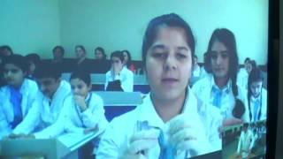 298 Sayli Mektebde 8b Sinfinde Biologiya Fenninden Informasiya Mubadilesi