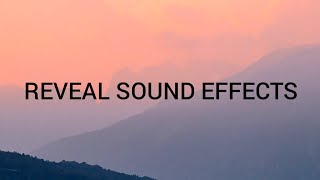 REVEAL SOUND EFFECTS 2020