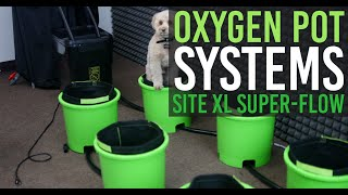 How to Setup OxygenPot System (Ebb & Flow)