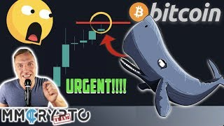 URGENT UPDATE!!!! EXTREEEME BITCOIN MOVE IS IMMINENT RIGHT NOW!!!!!!!! [Here is the Whales Plan...]