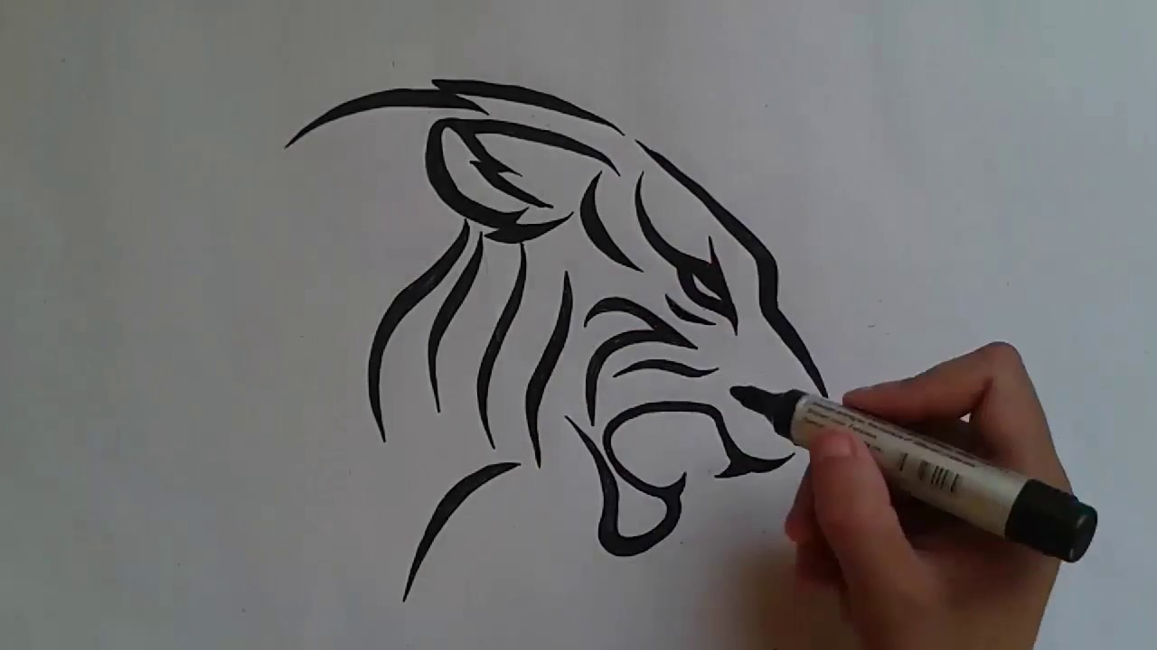 How To Draw Tiger Tattoo طرسقة رسم نمر وشم Youtube