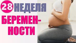 ДВАДЦАТЬ ВОСЬМАЯ НЕДЕЛЯ БЕРЕМЕННОСТИ Что происходит с женщиной на 28 неделе беременности и советы