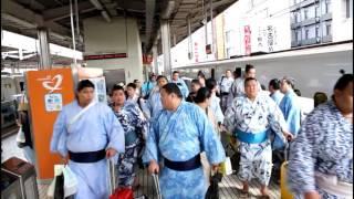 名古屋の初夏の風物詩、相撲列車です。