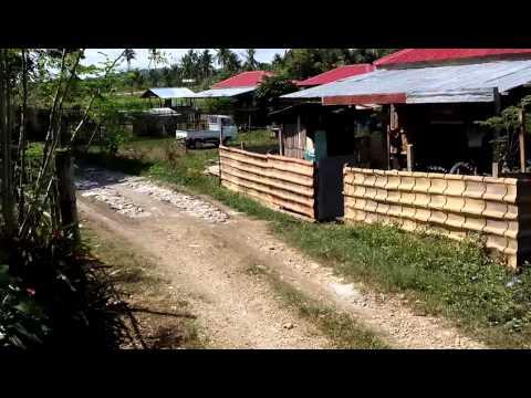 Our Lot at Bogo Cebu.