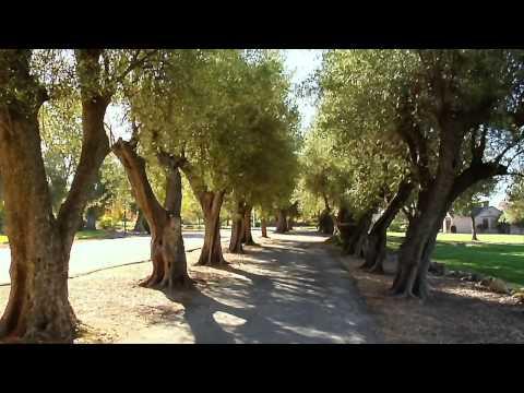 Specialty Crops - America's Heartland: Episode 907