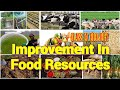 Improvement In Food Resources: Class 9 Biology Full Chapter