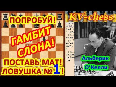 Видео Альберик
