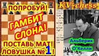 Гамбит Слона ♗ Ловушки в шахматах 1 в дебюте Видео для начинающих