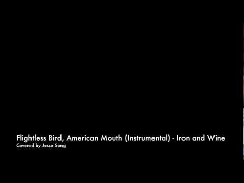 Flightless Bird, American Mouth  Iron & Wine Instrumental   Jesse Song