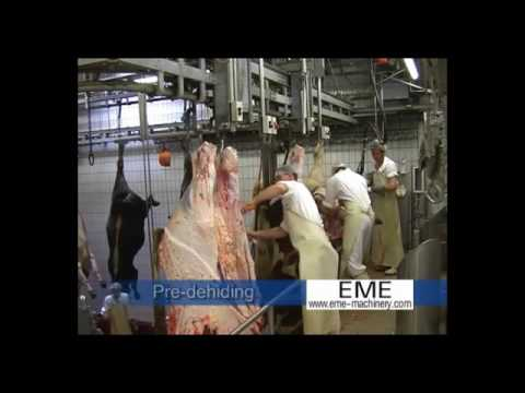High quality EME abattoir cattle slaughter line equipment video II