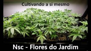 NSC Flores do Jardim