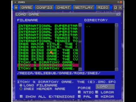 How to use the cheat feature in ZSNES by spektrum1983