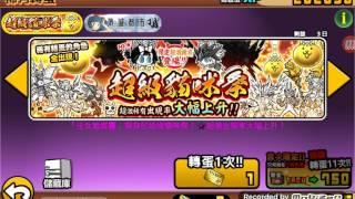 【貓咪大戰爭】超級貓咪季四連抽!