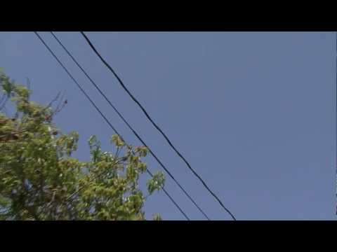 UFO - Palo Alto Ca. Bay Area