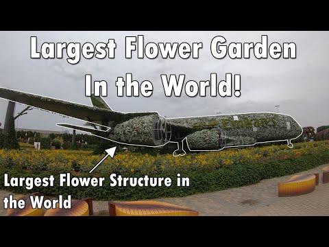 Worlds Largest Flower Garden – Miracle Garden Dubai