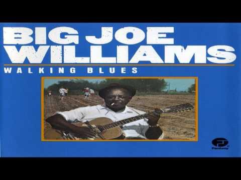 Big Joe Williams - Low Down Dirty Shame