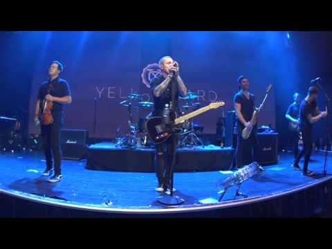 Yellowcard - Only One + Ocean Avenue (Final World Tour Live 2016 @RED Club Moscow)