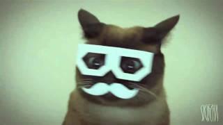 stereo skifcha ~ dubstep cat [1 hour loop]