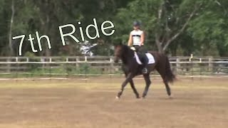 Young Filly - 7th Ride