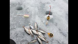 Зимняя Рыбалка в Марте на Водохранилище