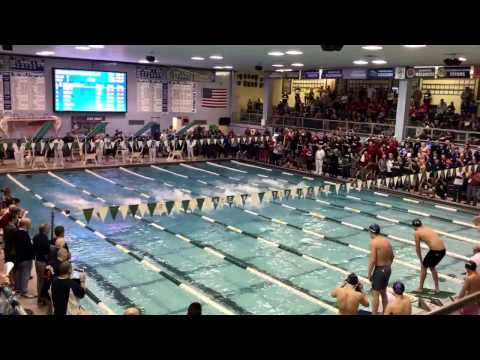 2017 IHSA State 200 Free Relay Final 1:22.89