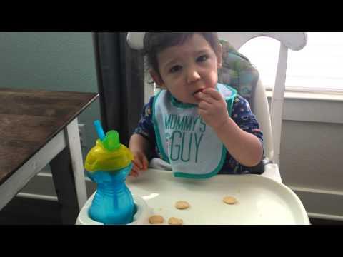 Baby sign language! April 1, 2015