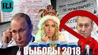 видео Выборы в России. Технология кампаний.
