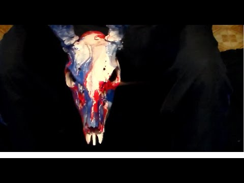 How To Spray Paint A Deer Skull