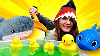 Baby Shark Songs for Kids & Toy Pools for Toy Ducks and Toy Sharks: Funny Videos for Kids
