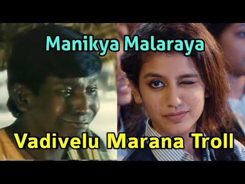 Vadivelu Troll | Oru Adaar Love | Manikya Malaraya Poovi Song Video| VineethSreenivasan, Shan Rahman