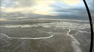 Florida Fishing:  Jacksonville Beach Whiting