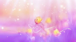 Spiritual Awakening Meditation Music   Ambient Music 432Hz   Positive Aura Cleanse   Self Healing