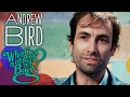 Andrew Bird - What's In My Bag?