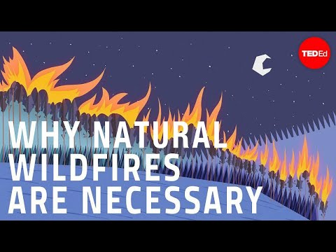 Why wildfires are necessary - Jim Schulz