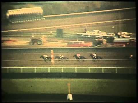 Kelso - 1963 Jockey Club Gold Cup