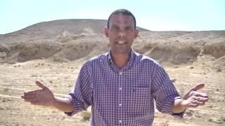 Lições do Deserto