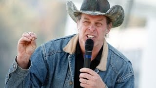 Will Ted Nugent hurt the TX gov. race?