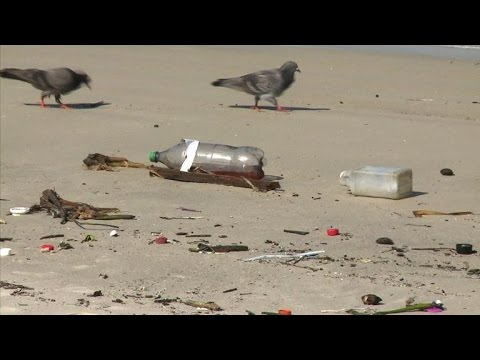 Brazil: Guanabara Bay will be clean by 2016 Rio Games