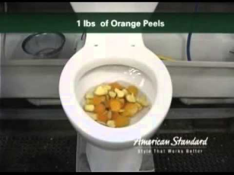 305 American Australian And Japanese Toilets Are The