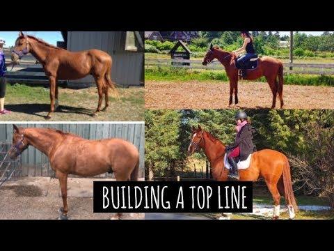 BUILDING A TOP LINE